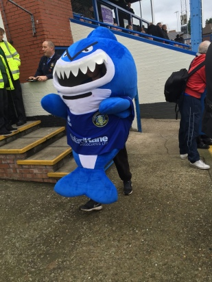 Trinity's angry looking mascot looking for some bite in midfield